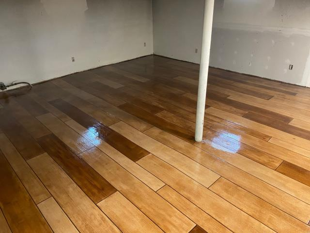 Madison, WI - I LOVE this wood floor! The variety in the deepness of color is absolutely stunning! I don't think the floor could be any more perfect! Xtreme Clean & Coatings sure knows how to put on quality decorative coatings! Absolutely fantastic work!