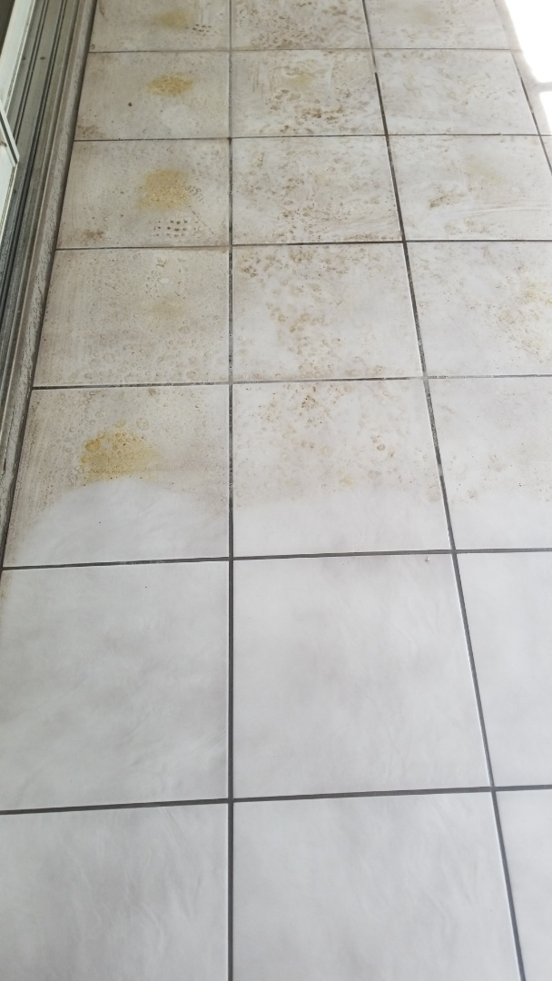 Seminole, FL - Cleaning Tile floors in the Imperial Point neighborhood. Tile and Grout Cleaning produces incredible results.