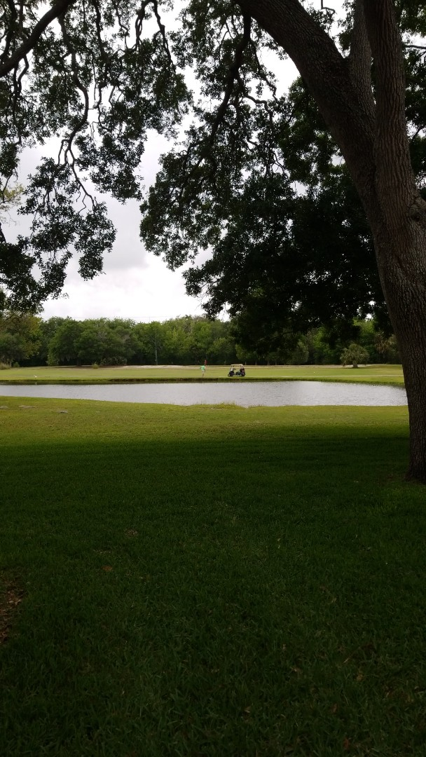Largo, FL - Carpet Cleaning for a new customer that her condominium is right on East Bay country club with a beautiful view.