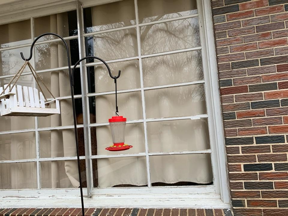 Gardendale, AL - Need windows