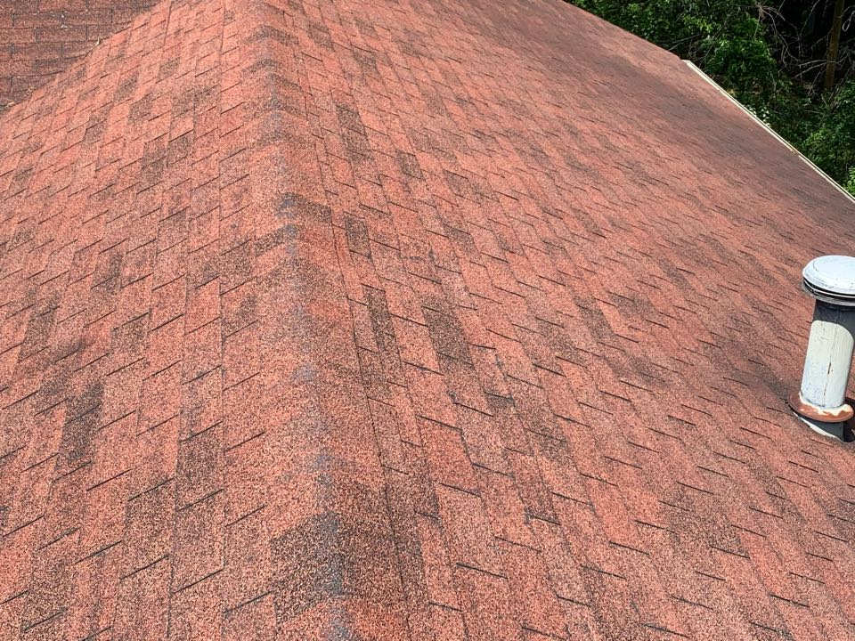 Irondale, AL - Measured to replace three tab roof and gutters.