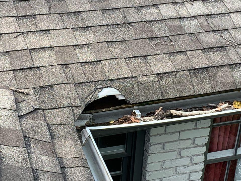 Birmingham, AL - Repair roof