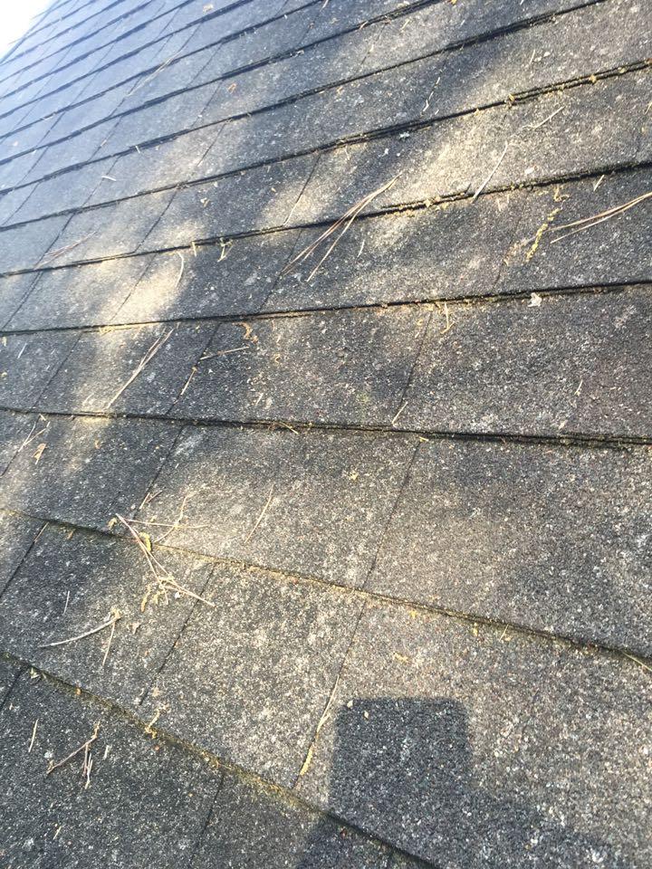 Vestavia Hills, AL - Checking for roof damage from hail or wind