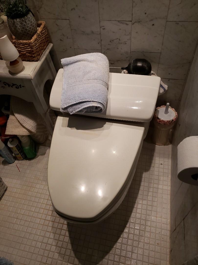 Hallandale Beach, FL - Master bath toilet leaking