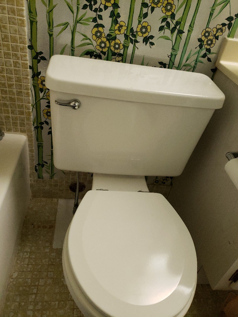 Deerfield Beach, FL - The master bath toilet leaking at the base
