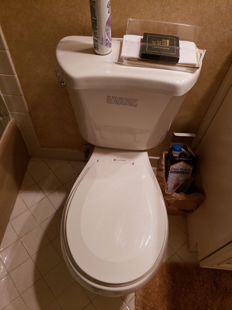 Pompano Beach, FL - Guest bath toilet run