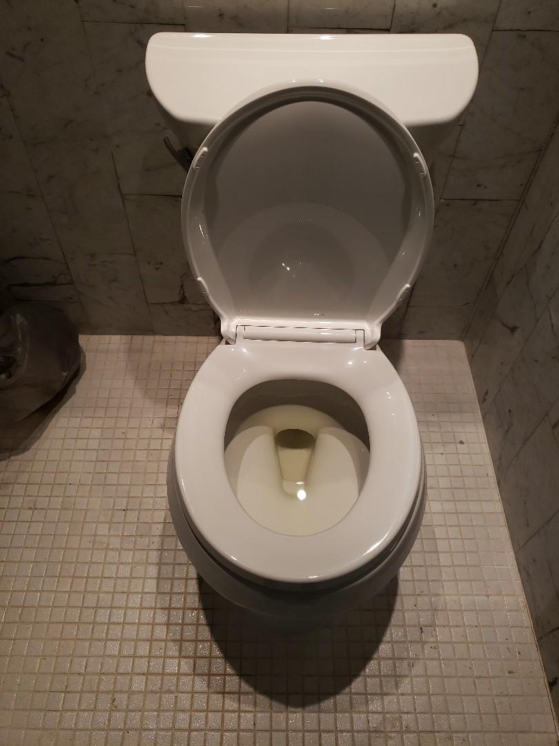 Fort Lauderdale, FL - Master bath toilet installation