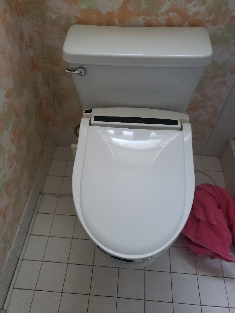 Master bath toilet nt flushing