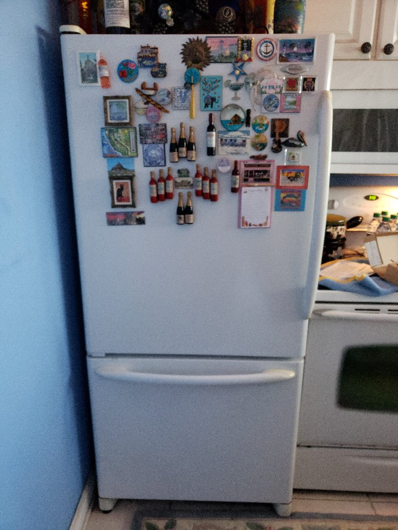 Refrigerator out