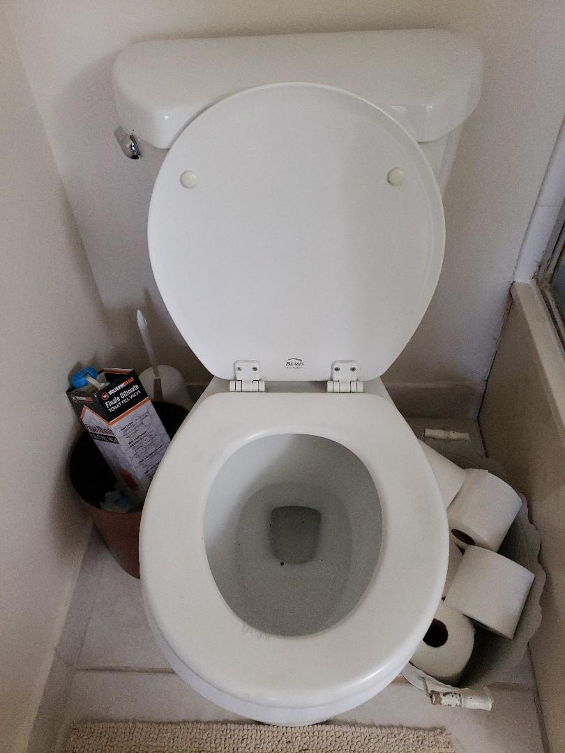Pompano Beach, FL - Master/guest bath toilets runs
