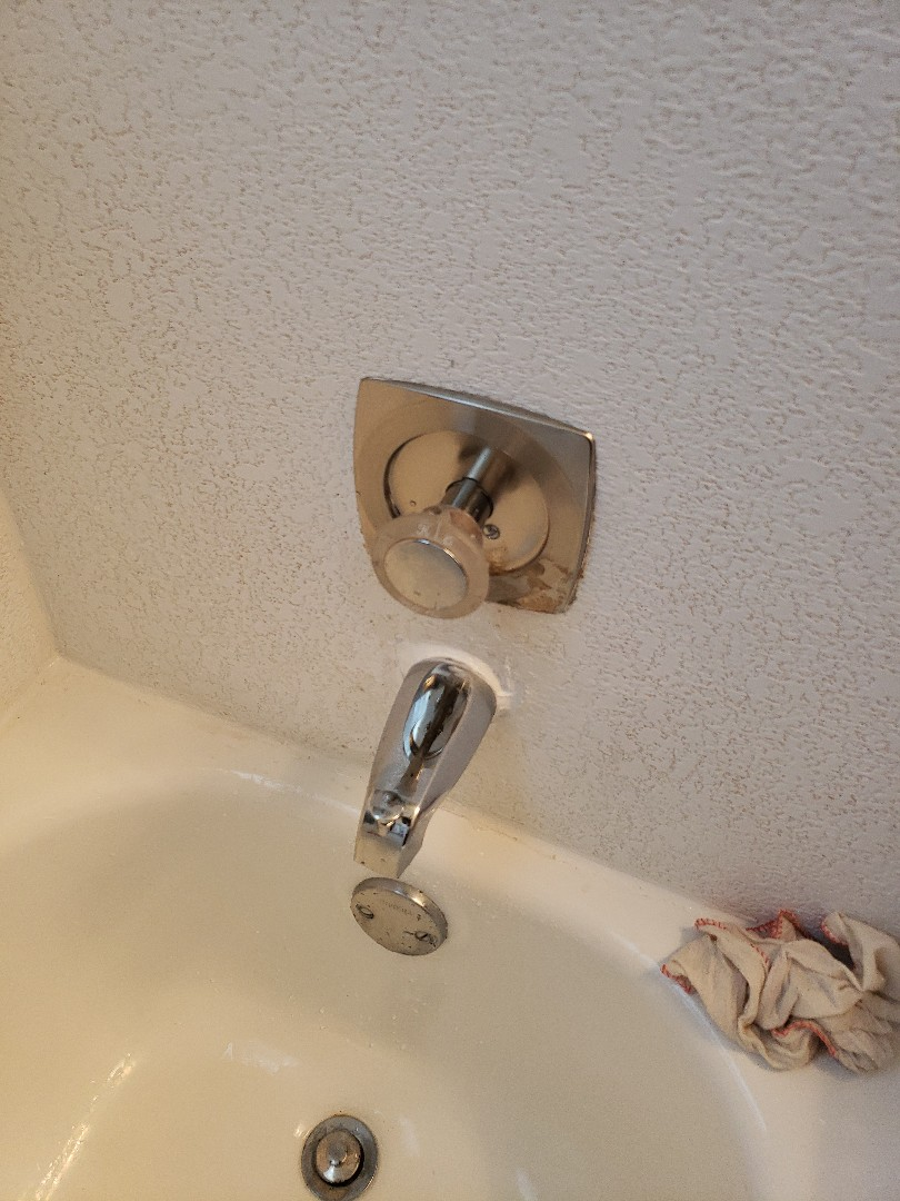 Deerfield Beach, FL - Master bath tub spout nt working