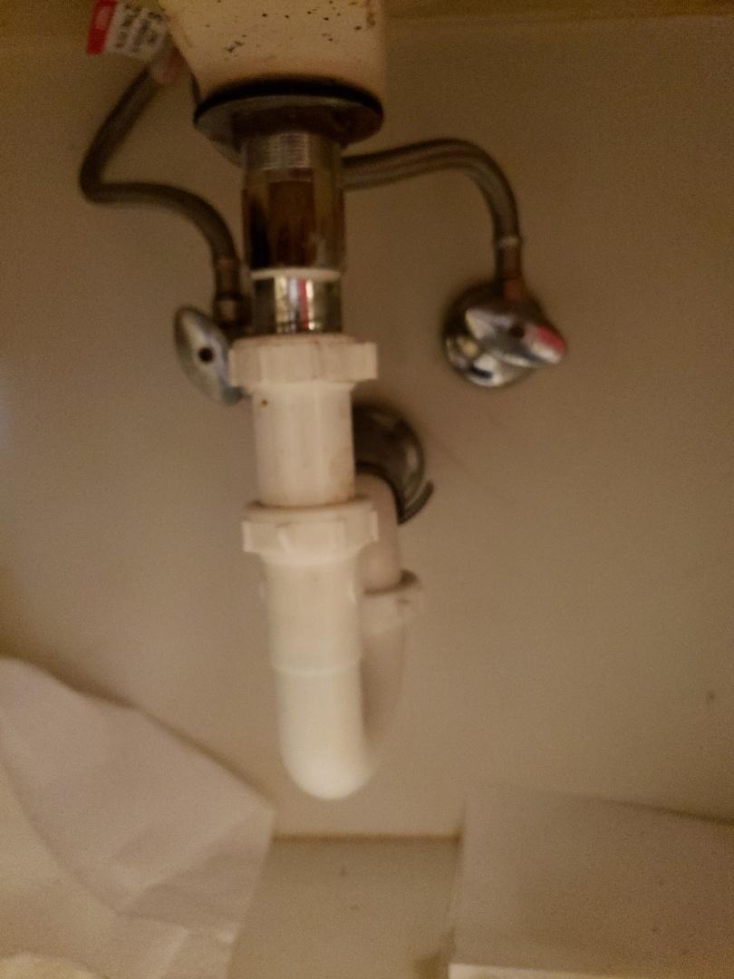 Fort Lauderdale, FL - Master bath lav drain clogged