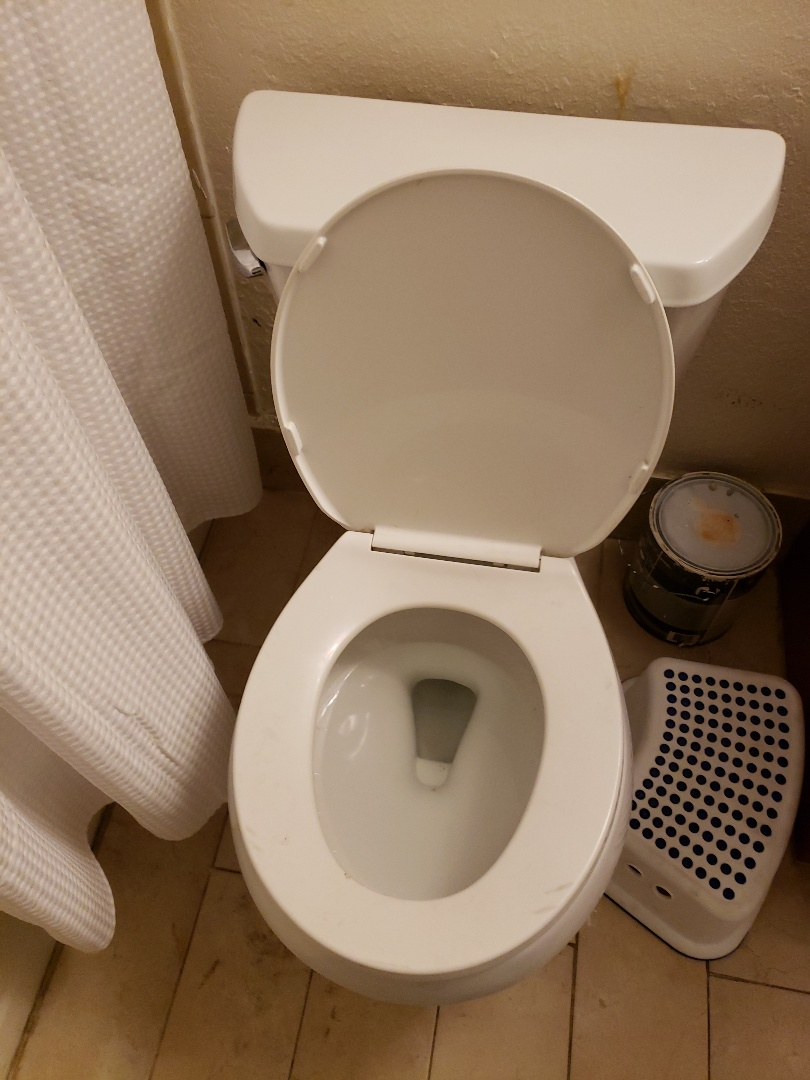Pompano Beach, FL - Guest bath toilet runs