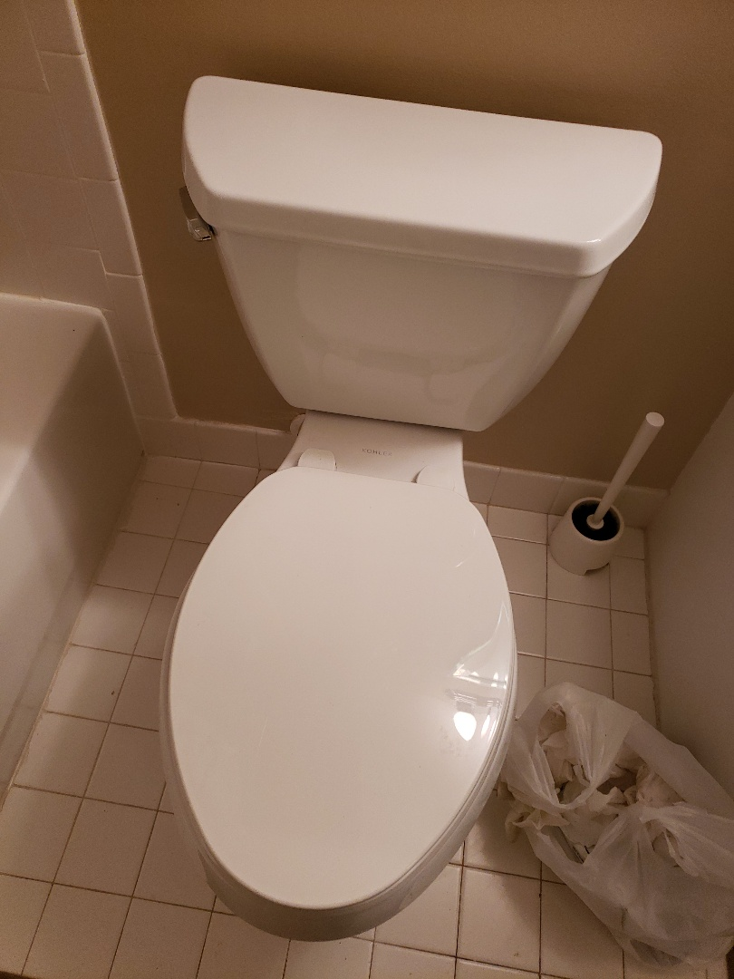 Tamarac, FL - Guest bath toilet flange replacement