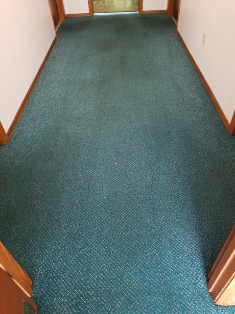 Completed a common area carpet clean for an apartment complex