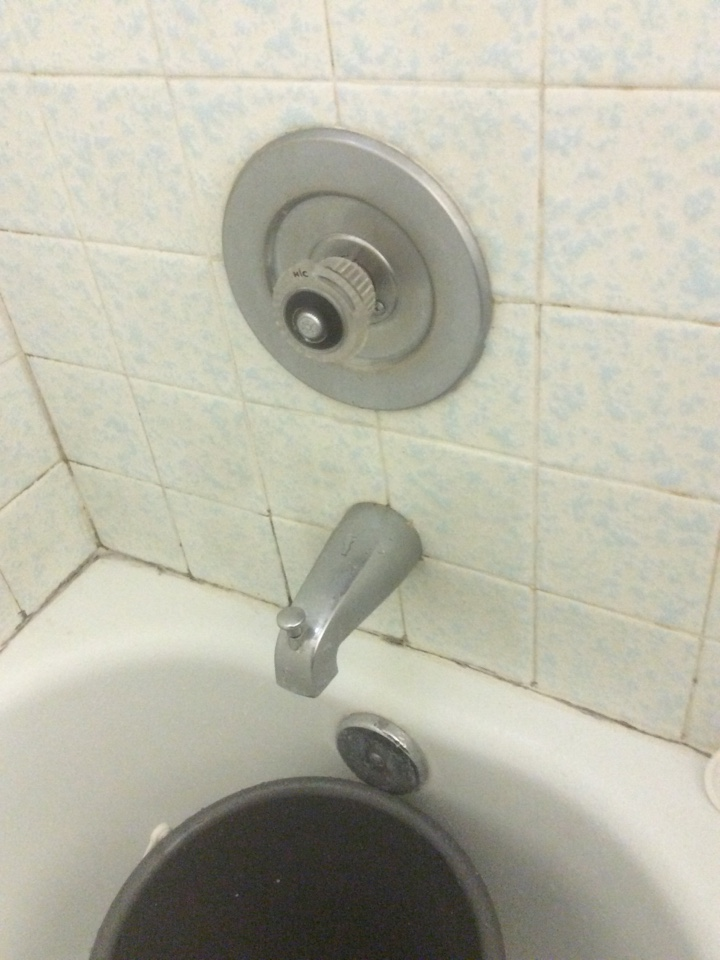 Thousand Oaks, CA - Plumber needed shower leaking.