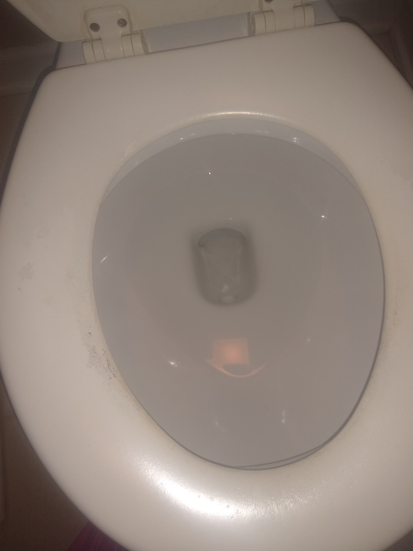Fishers, IN - Toilet running