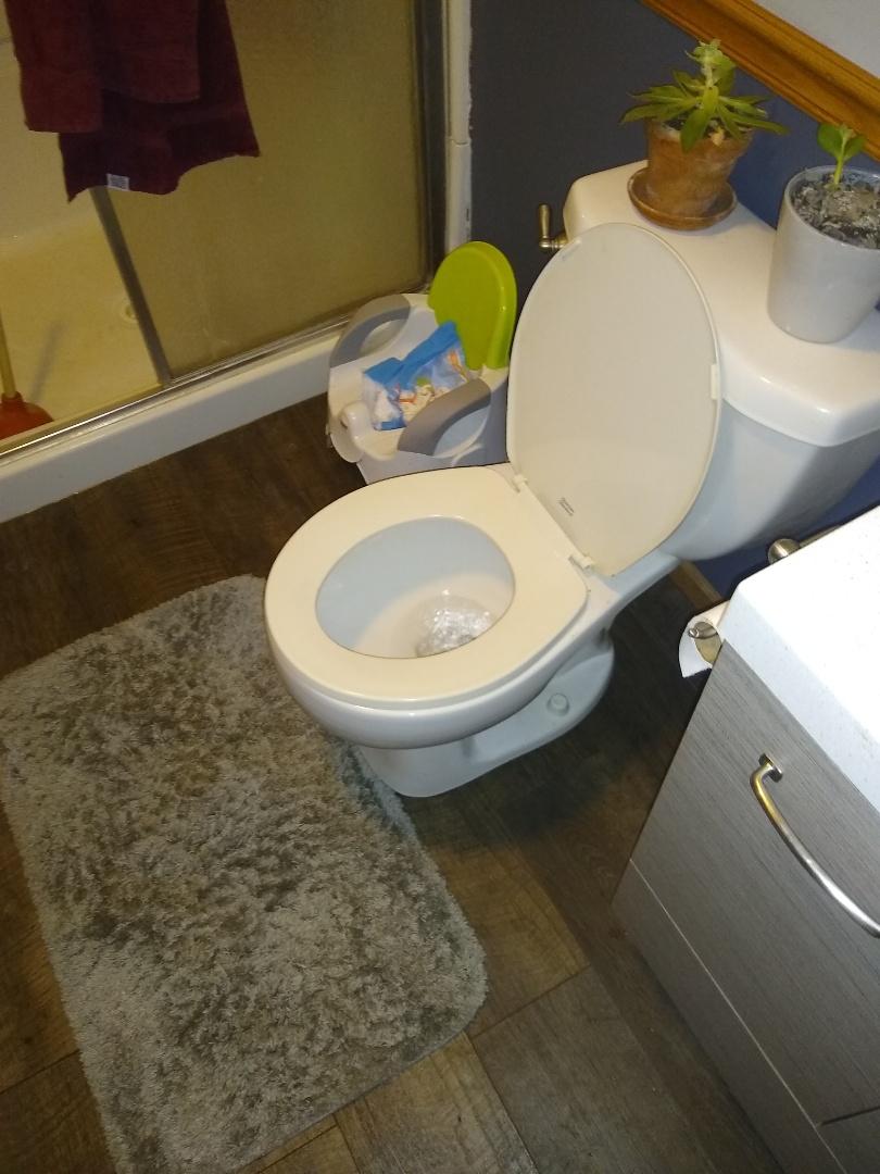 Rushville, IN - Toilet won't flush