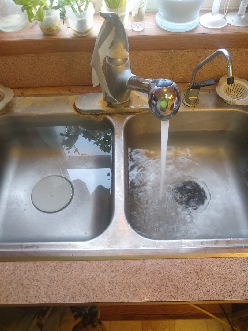 Shirley, IN - Kitchen sink clogged