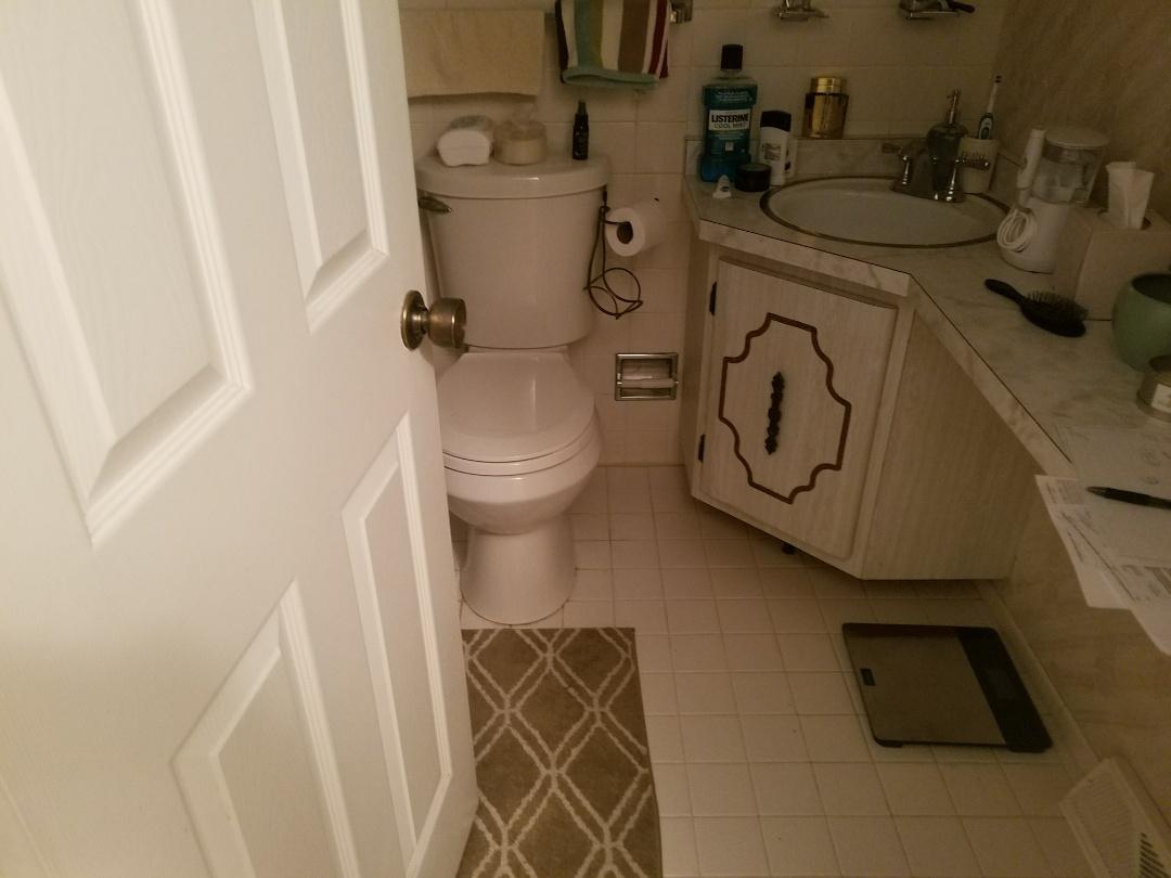 St. Louis, MO - Bathroom remodel new shower walls, vanity and top . New LVT floor