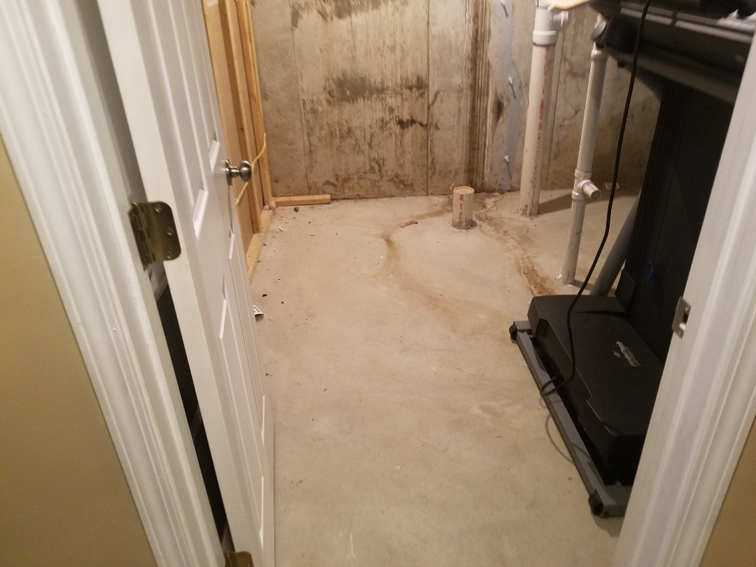 St. Peters, MO - Basement bathroom ,grouted LVT floor 36 inch vanity with onyx top