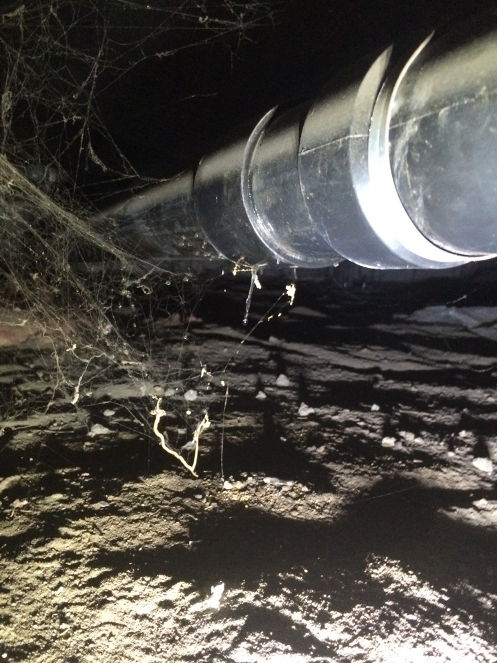South El Monte, CA - Leak on 3 inch suspended sewer main underneath house.