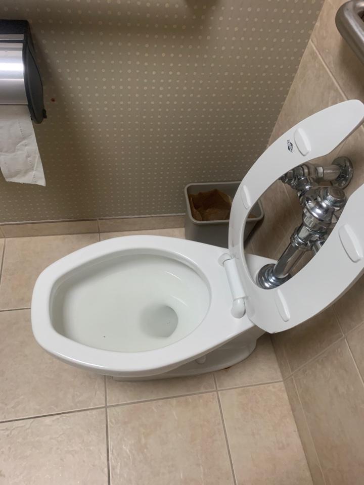 Repair leak in toilet