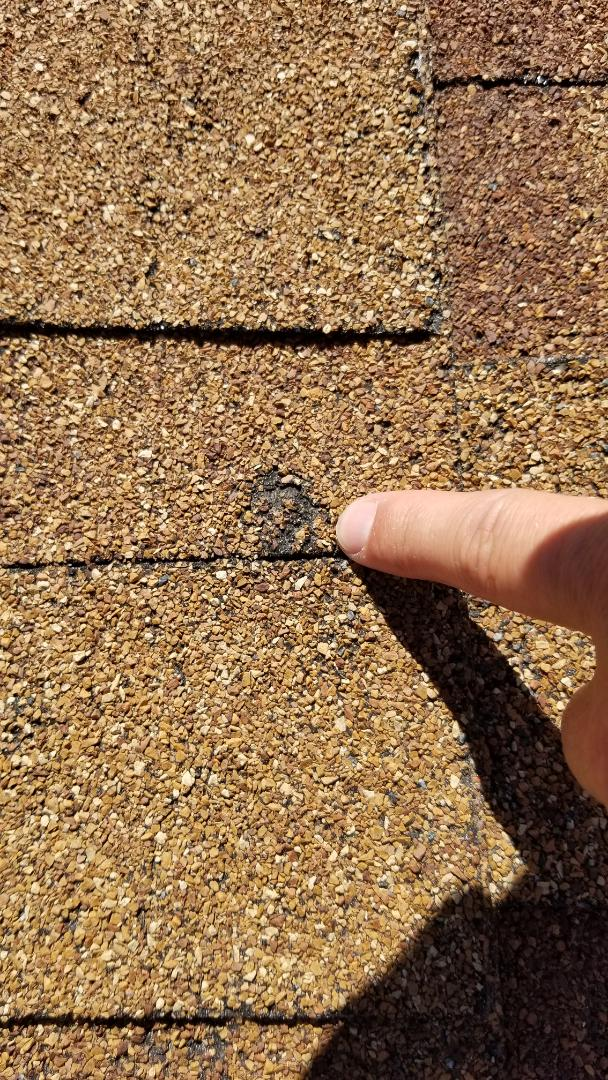 Aurora, CO - We are inspecting a roof for hail damage and helping to decide if the roof needs to be replaced. We did find significant hail damage to the roof and gutters from a storm a few years ago.
