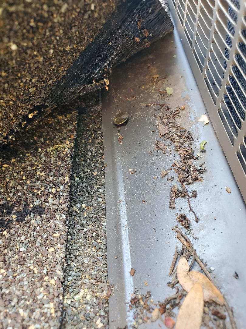 Centennial, CO - We are inspecting a roof leak on this home in Lone Tree. We found that the roof vent was not not wrapped with ice and water shield and is letting water in at the nail holes during particularly bad rain storms