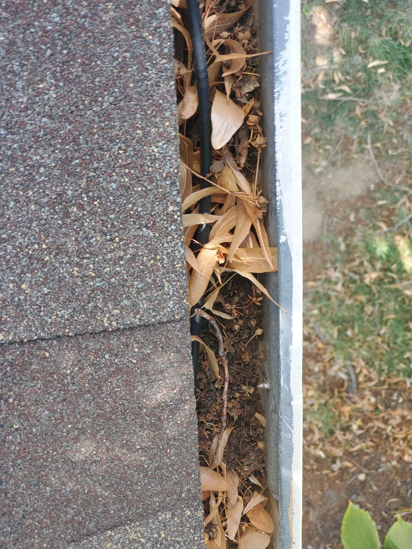 Aurora, CO - We are doing a gutter inspection for new gutters on this rental home in Aurora. We will also quote installing gutter screens to prevent debris from accumulating in the gutters under the tree
