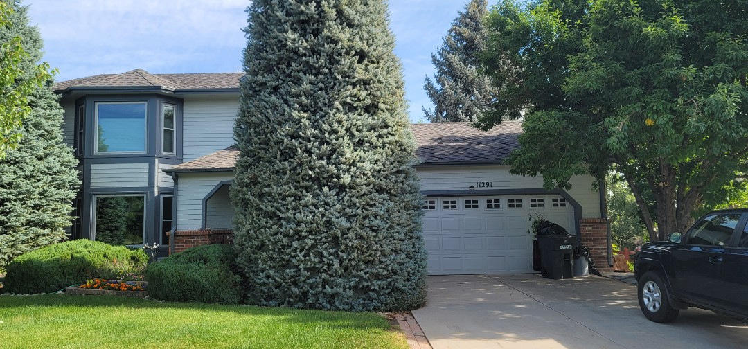 Parker, CO - We are doing a gutter inspection for a full gutter replacement with downspout replacement and also a bid to replace four skylights