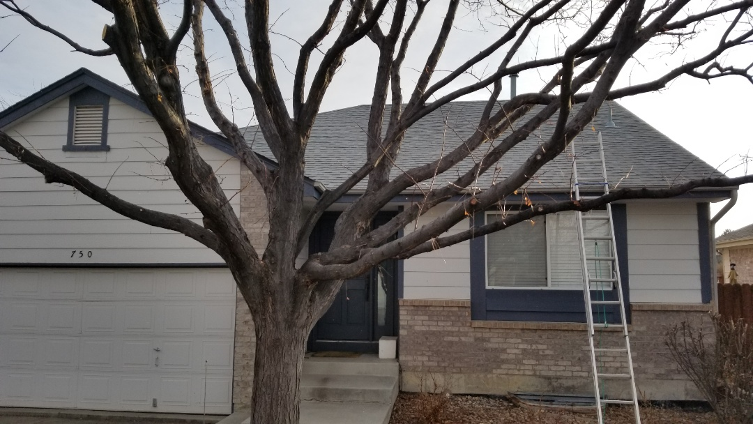Aurora, CO - We did a roof replacement with Tamko Heritage shingles due to this house being sold. The roof color is Old English Pewter.