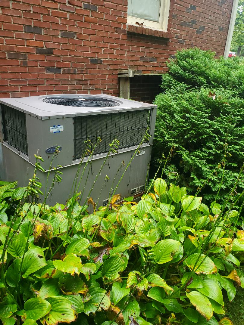 Cleveland, TN - Service call.  Performed maintenance on Carrier heat pump package system