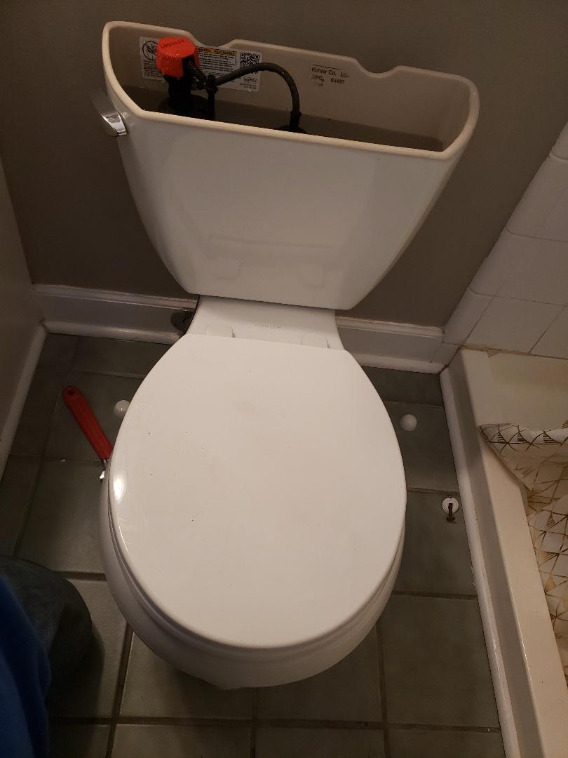 Smyrna, GA - Pull kohler toilet and replace/repair toilet flange and reset Kohler toilet