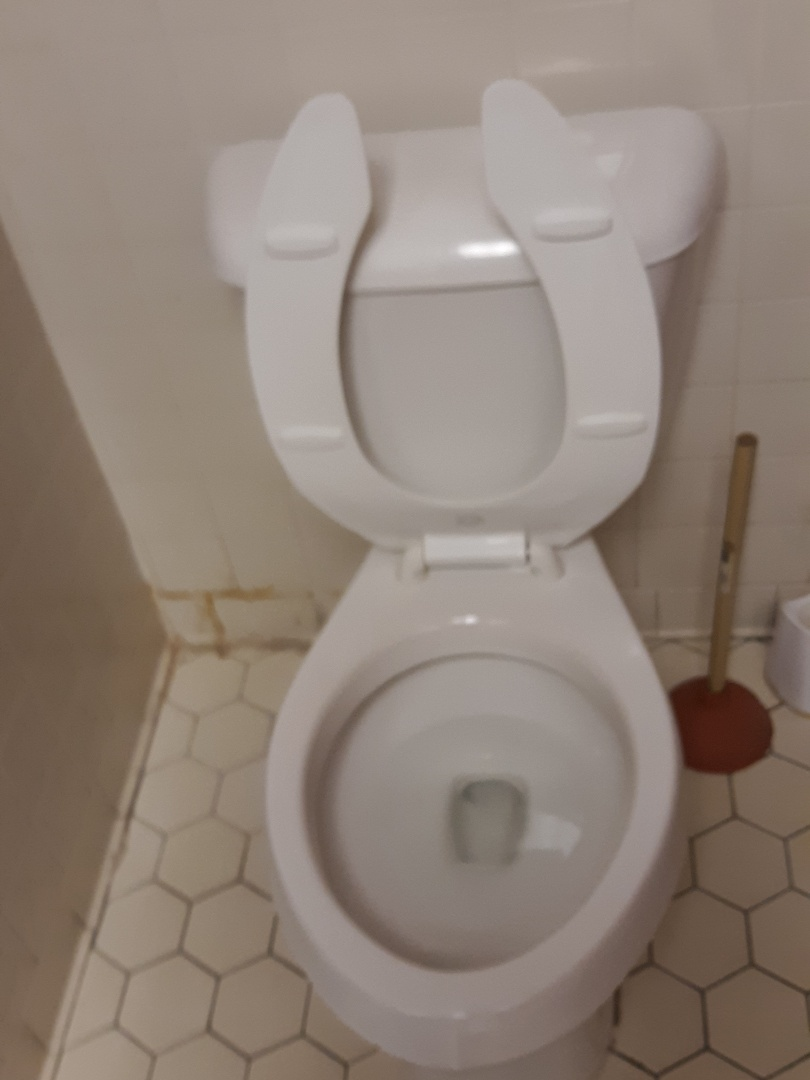 Jonesboro, GA - Toilet repaired with new kohler bowl