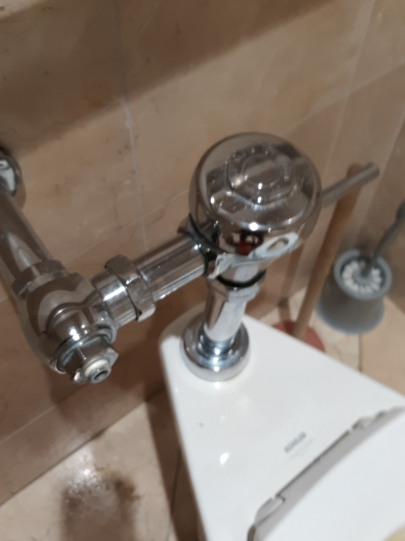 Sloan flush valve replacement