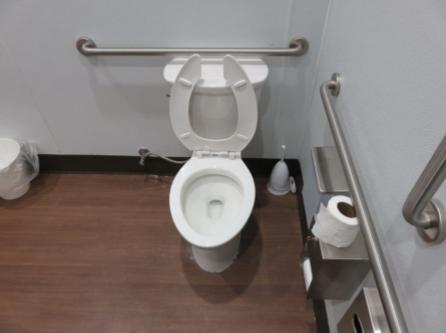 Duluth, GA - Installed ADA Kohler toilet with grab bars