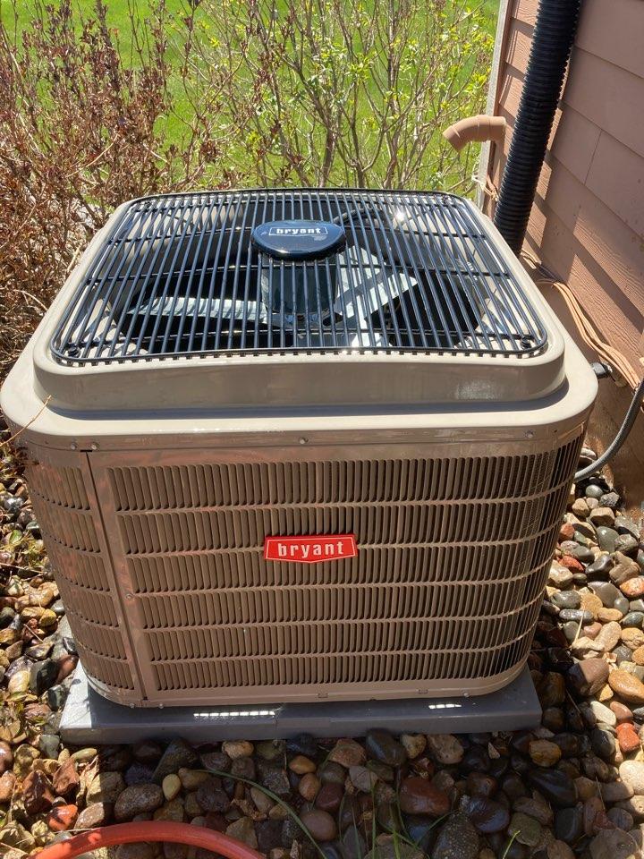 Loretto, MN - Bryant AC maintenance in Loretta