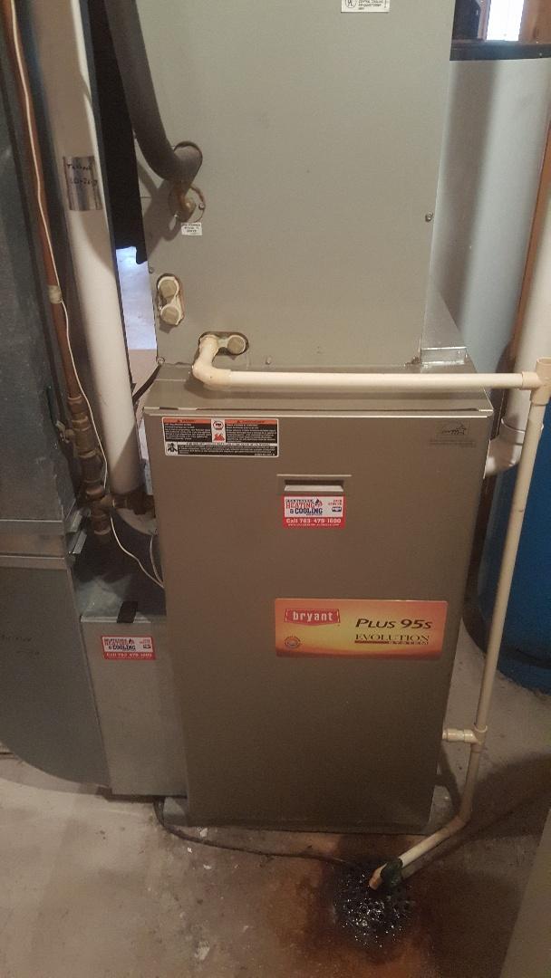 Rockford, MN - Performing maintenance on Bryant furnace in Rockford