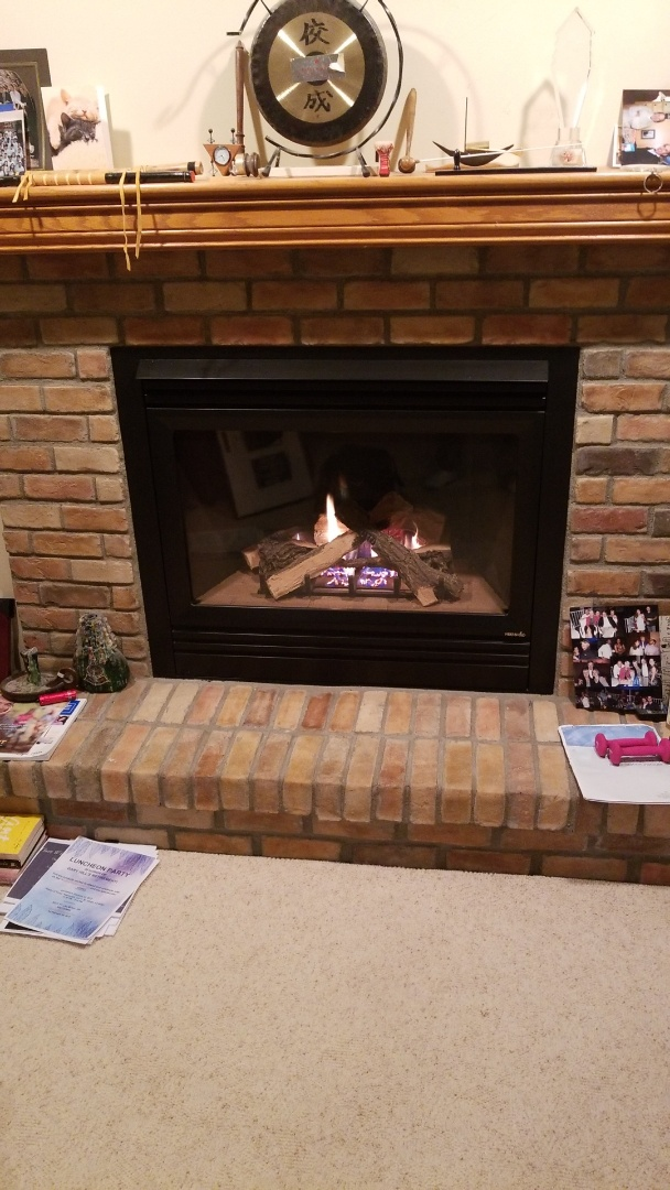 Plymouth, MN - Repairing a Heat-N-Glo fireplace in Plymouth