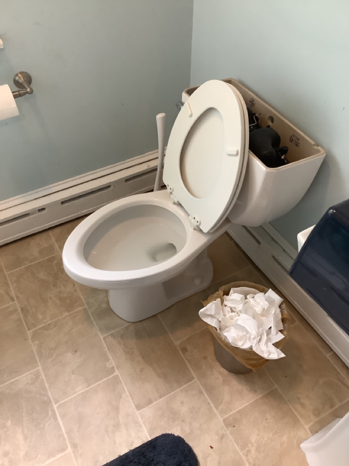 Willow Grove, PA - Obstruction in toilet. Blockage in toilet. Clog in toilet. Toilet drain cleaning. PlumbPro Services. Plumb Pro Services.