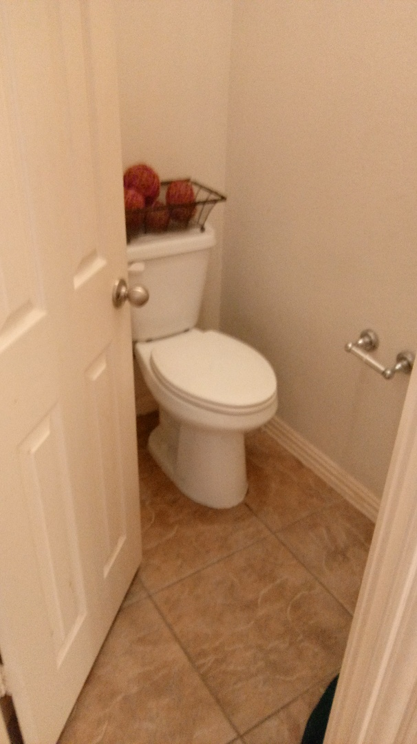 Installed western toilet in master fixed hall bath toilet and basket strainer in kitchen sink