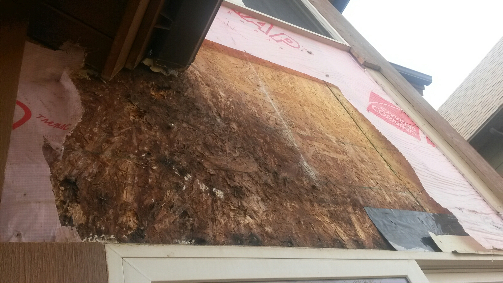 Park City, UT - Yes that is mold. The end of the rain gutter has been leaking and letting water run into the wall