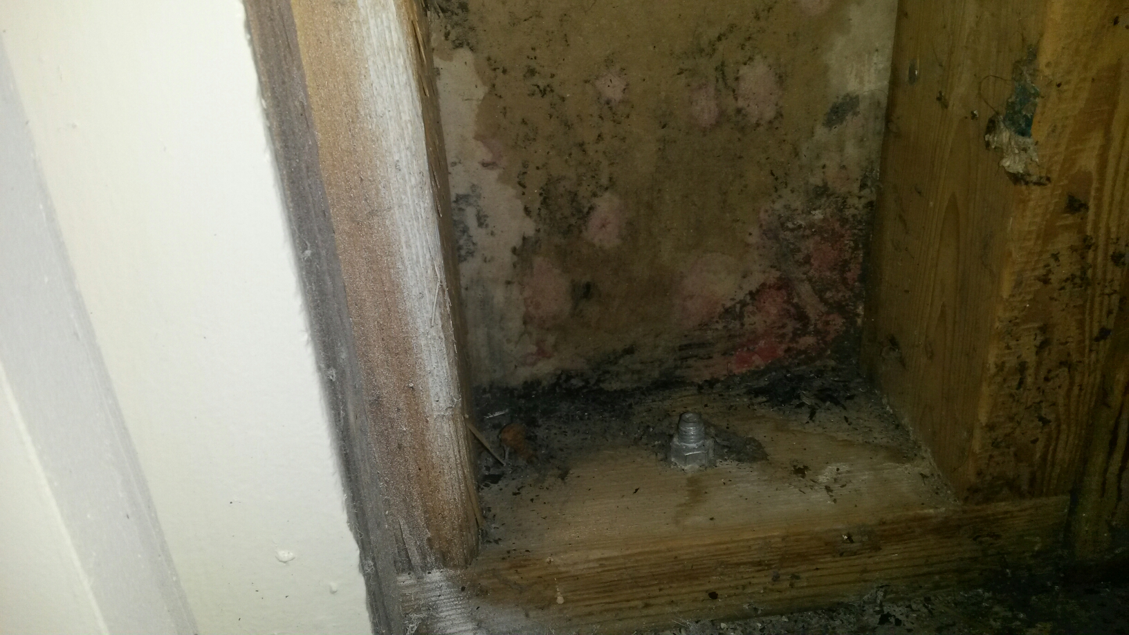 Roy, UT - Mold inspection in Roy Utah for a prospective home buyer. Multiple issues going on. A couple of leaks and some significant ground water problems. Will probably n?e a sump pump in addition to the mold cleanp.