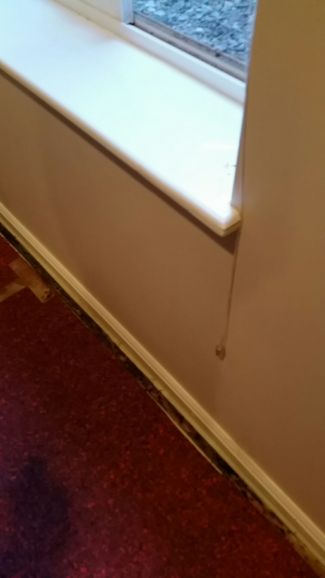 Ogden, UT - Mold inspection window weel leaked several times causing microbial growth