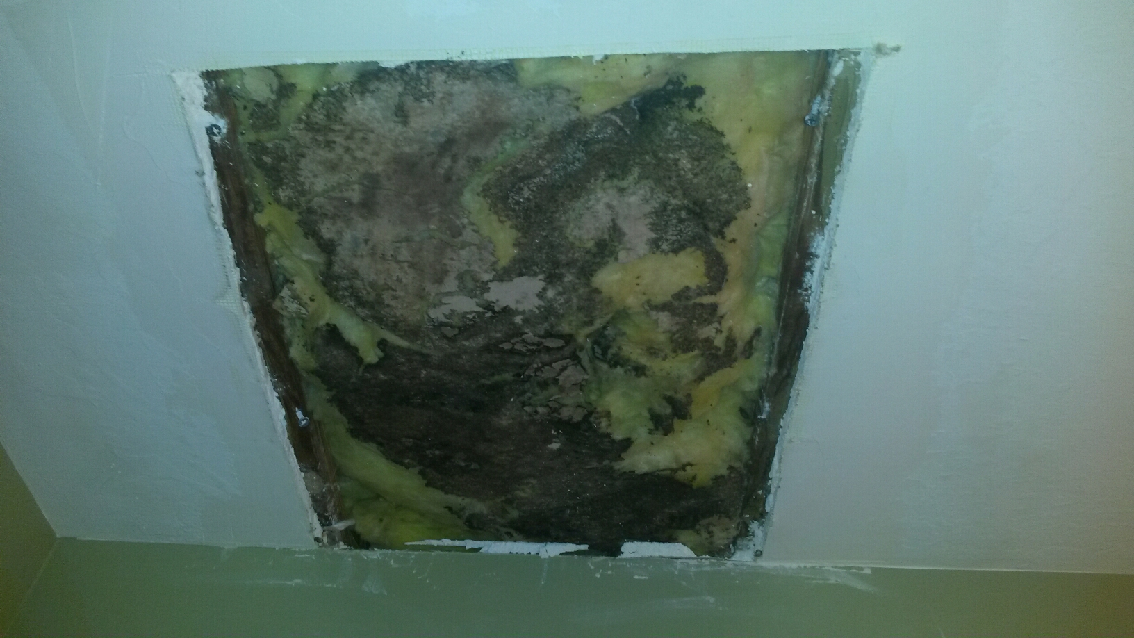 Layton, UT - Mold cleanup in Layton Utah. The dark moldy insulation in the picture, I just barely uncovered. The homeowner had hired a handyman to repair the water damaged drywall on the ceiling of this bathroom. He had already cut out the old drywall and patched in a new piece of drywall. The homeowner asked me to remove his repair so that I could thoroughly inspect the damage. There is a significant amount of mold in the ceiling cavity that should be cleaned up, but this was not concerning to the handyman.