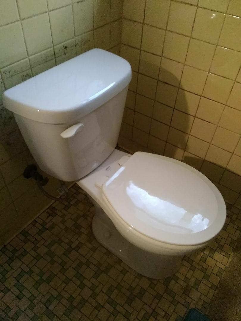 Ridge Manor, FL - Toilet install