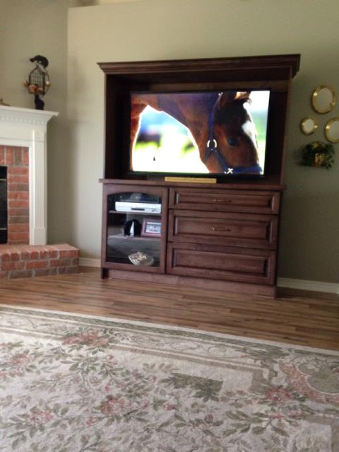 Added a TV stand with drawers to den.  The stained maple with crown and storage for components is wonderful