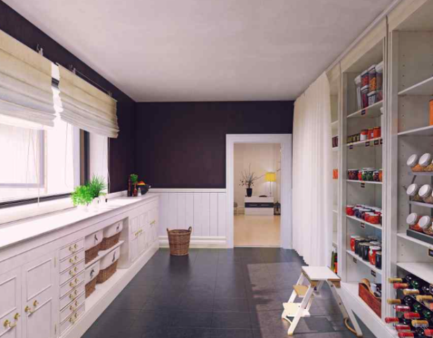 Custom Pantries Panama City Beach:  Everybody can choose custom kitchen and pantry storage to make the most out of the available space in their homes.  Check Out The Link : https://alphaclosets.com/custom-kitchen-and-pantry-storage/