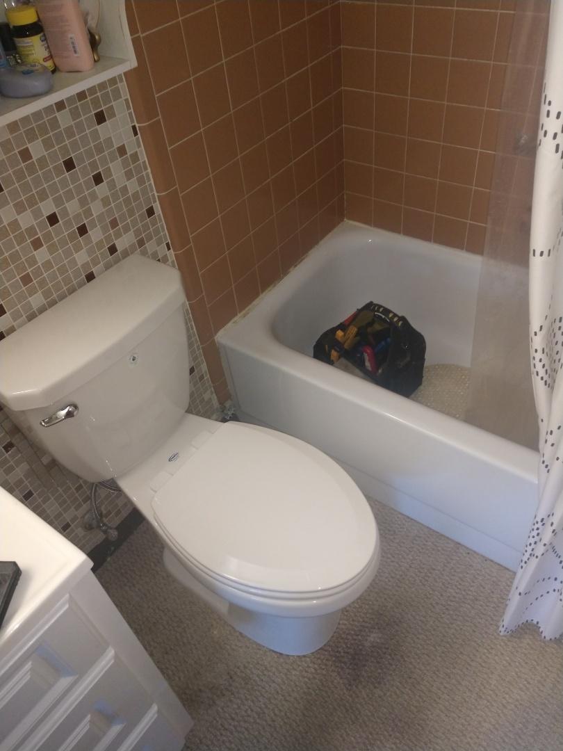 Lexington, MI - Mansfield Toilet Repair